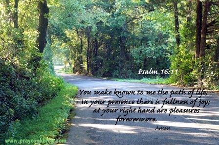 psalm16-11-b_f_improf_450x298